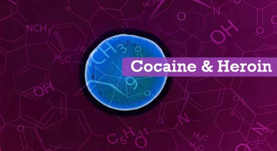 Cocaine & Heroin Training
